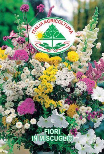 Fiori in miscuglio vendita semi sementi italia for Vendita semi fiori